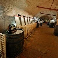 Wein Keller valtice Auf was können Sie sich freuen im Wein Salon oder in Valtice Untergrund, und welche Weinkeller sollten Sie besuchen?